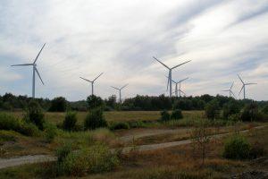 Pakri wind farm near Paldiski, Estonia, Credit: Hannu, Wikimedia Commons